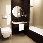 Фото 11: Интерьер ванной комнаты совмещенной с туалетом