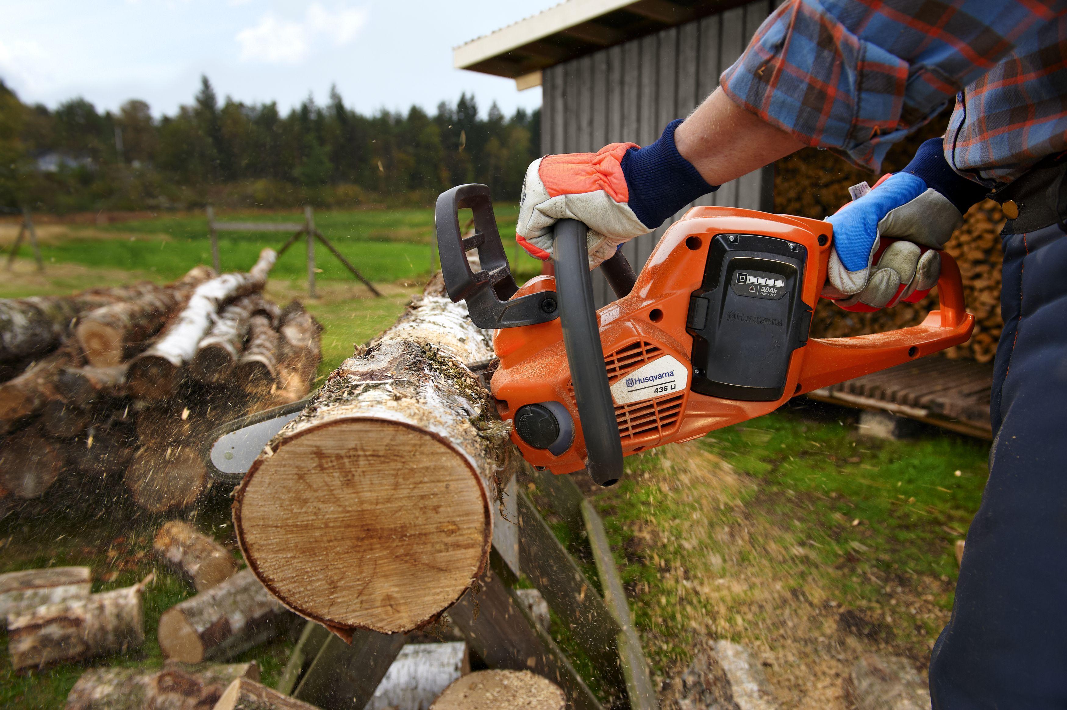 Бензопила использование дерево