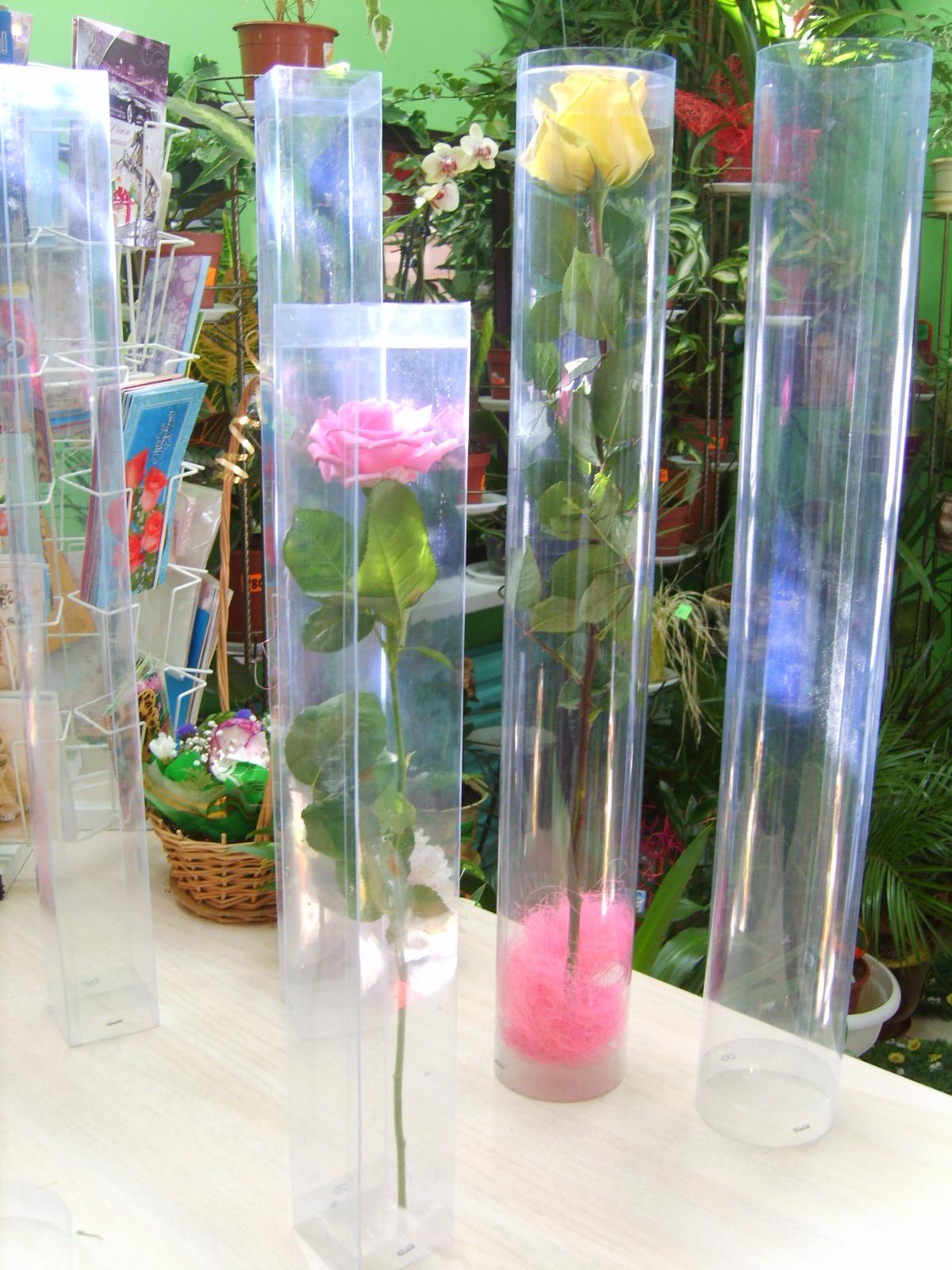 Материал для оформления цветов