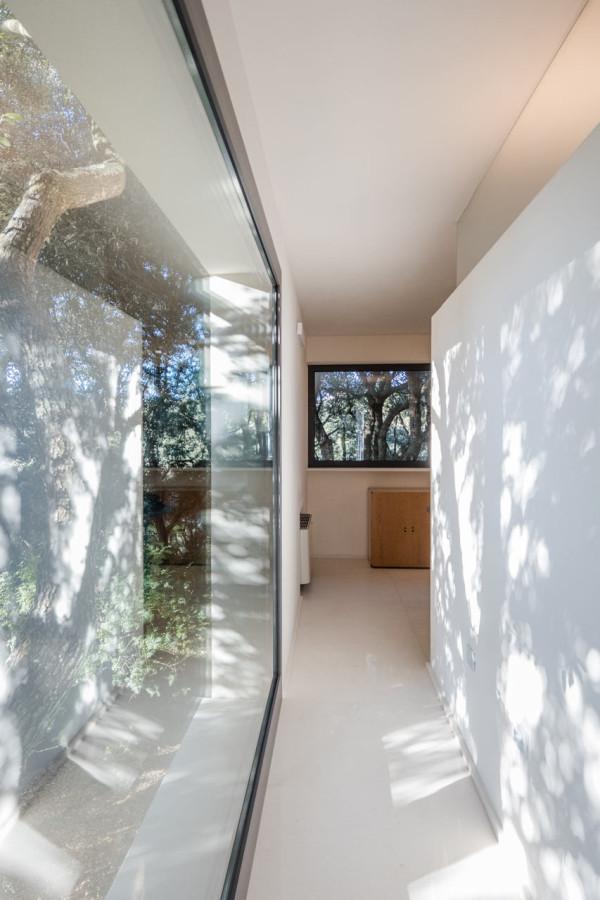 дом в лесах сассари13