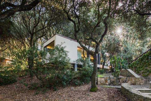 дом в лесах сассари4