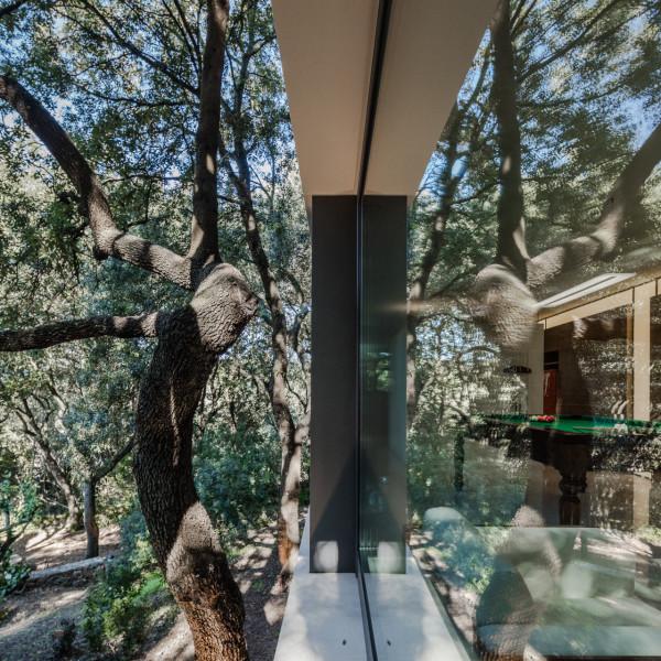 дом в лесах сассари9