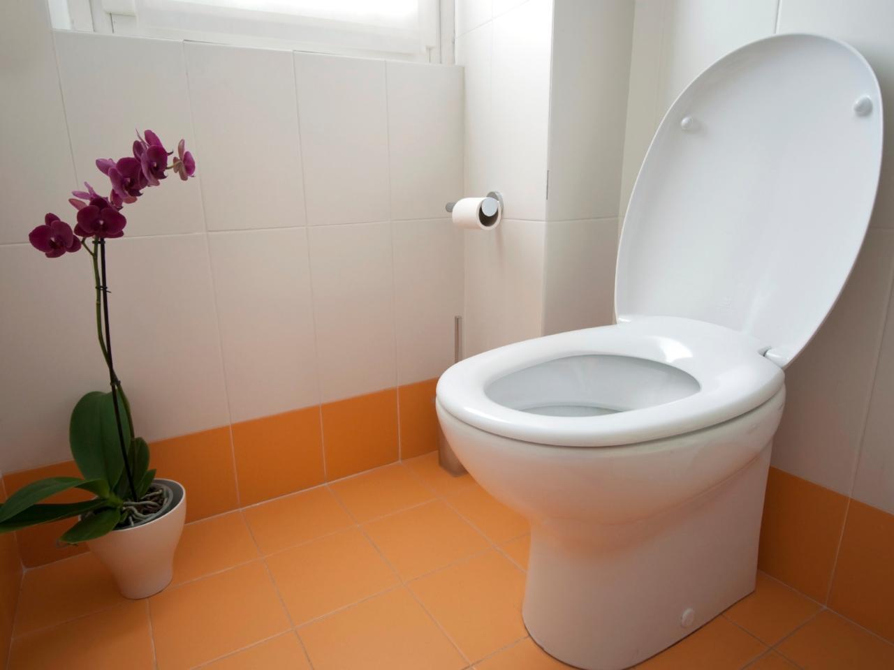 Сиденье для унитаза из дюропласта