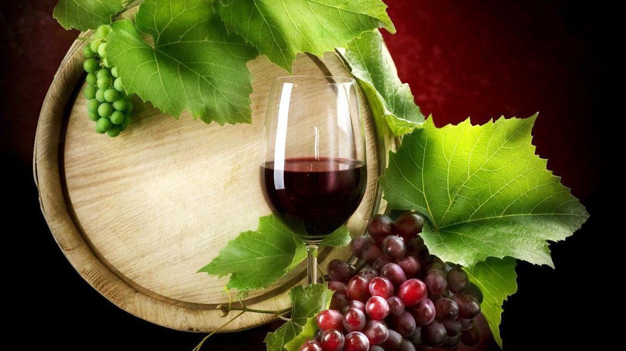 Дубовые бочки с вином
