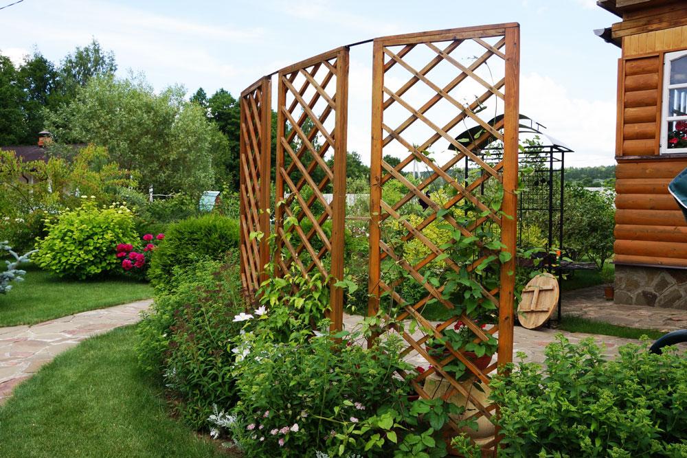 как отделить огород от зоны отдыха фото ремонт