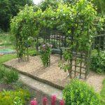 Фото 18: Пергола - ширма в саду
