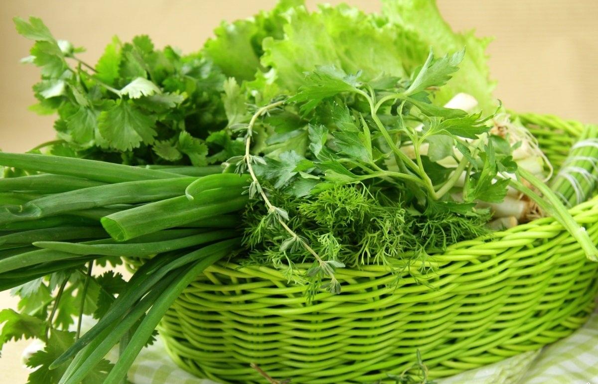 Зеленый лук и укроп