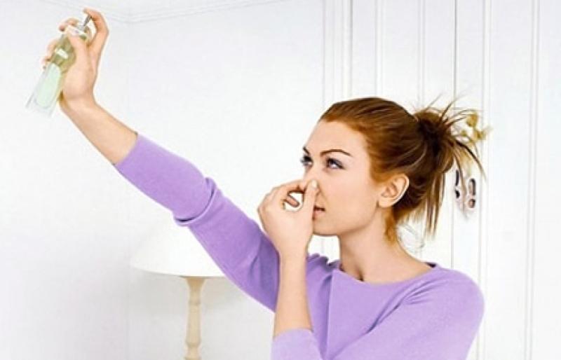 Необходимо вывести трупный запах с квартиры