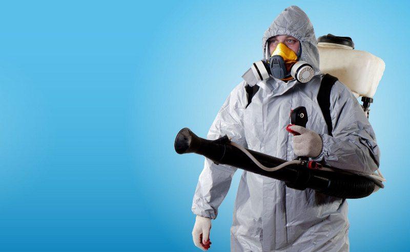 Чисткой помещения должны заниматься специалисты