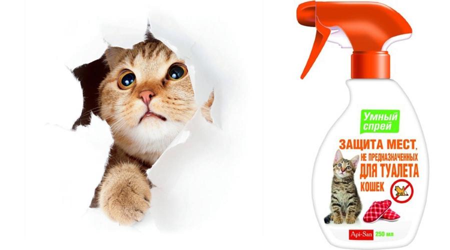 Средство для защиты мест от мечения кошек