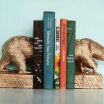 Фото 142: Lержатель для книг на полке фото