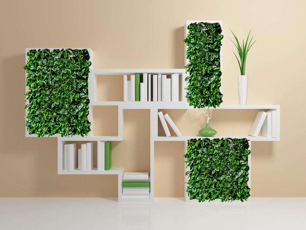Полки с растениями