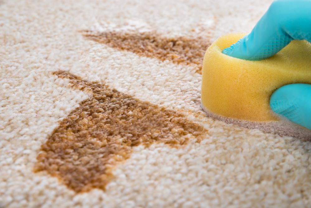 Специальные жидкости для чистки ковров могут повредить покрытие