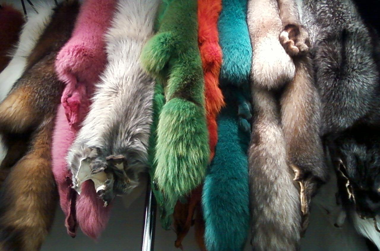 Окрашенный разноцветный мех