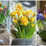 Фото 59: Весенние композиции из цветов в горшках для выращивания дома