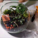 Фото 56: Флорариум с композицией в аквариуме