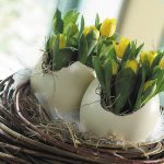 Фото 56: Букеты в яичной скорлупе