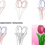 Фото 69: Нарисовать два тюльпана поэтапно своими руками