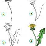 Фото 66: Как нарисовать одуванчик поэтапно