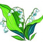 Фото 84: Рисунок с ландышами в цвете на 8 марта