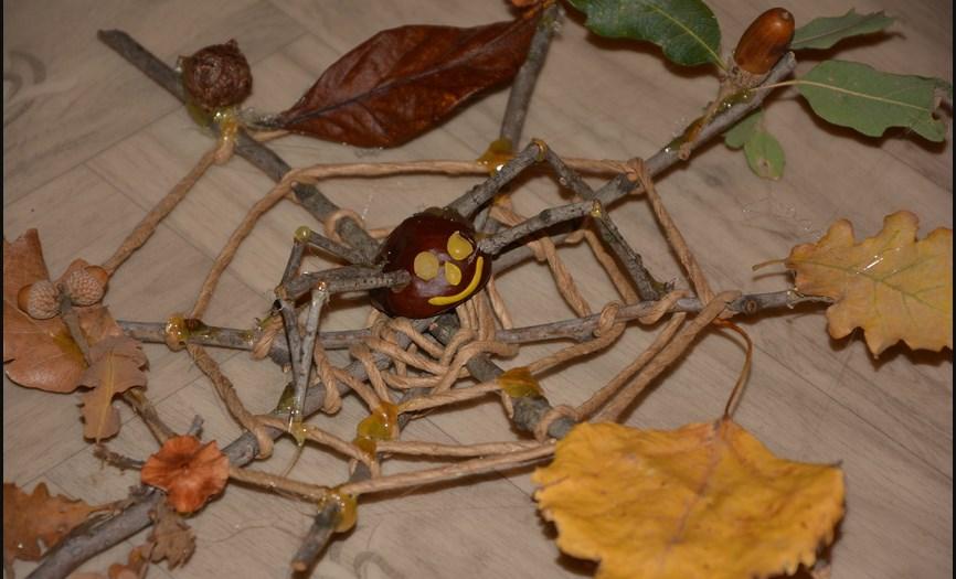 Паучок из каштана на паутине из веточек