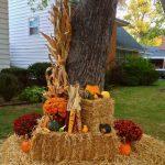 Фото 45: Украшение двора кукурузой