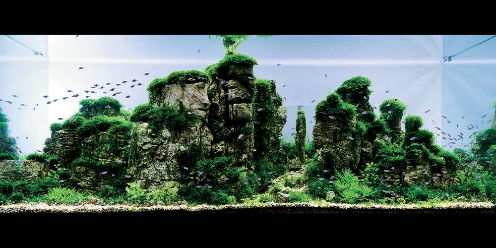 Стиль аквариума в стиле ивагуми