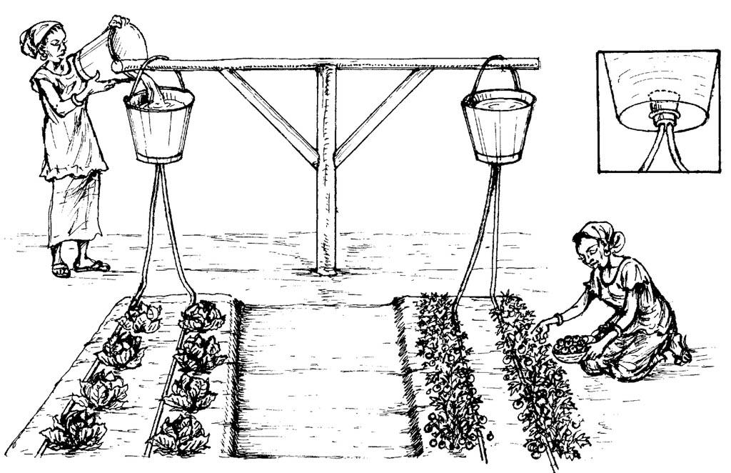 Схема простого капельного полива
