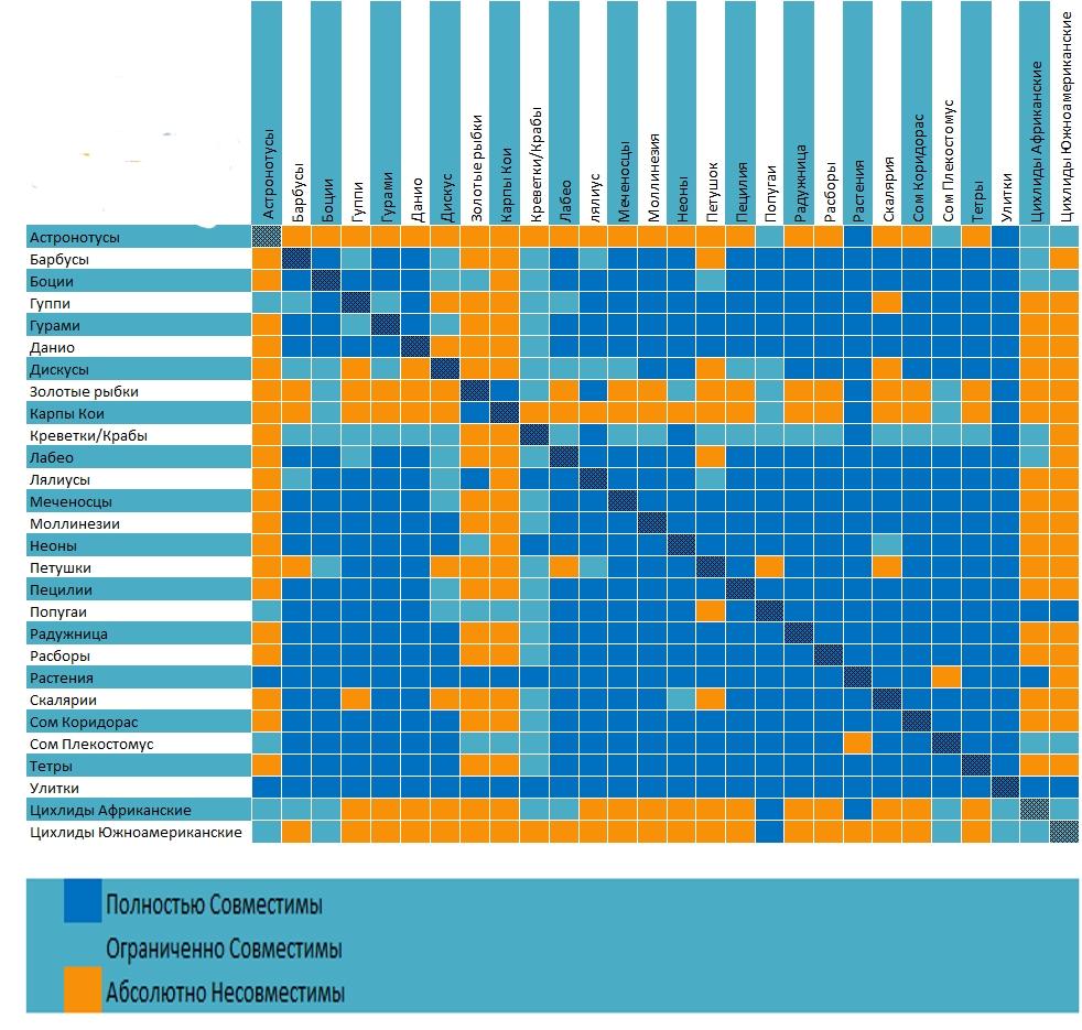 аквариумные рыбки фото и названия совместимость аквариумных рыбок регламентирует