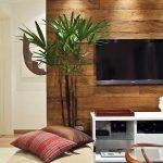 Фото 49: Акцент на стене с телевизором фото
