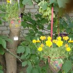 Фото 28: Дизайн сада своими руками фото
