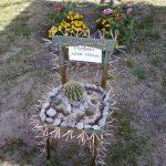 Фото 26: Поделка для сада фото