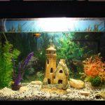 Фото 56: Домик в аквариуме