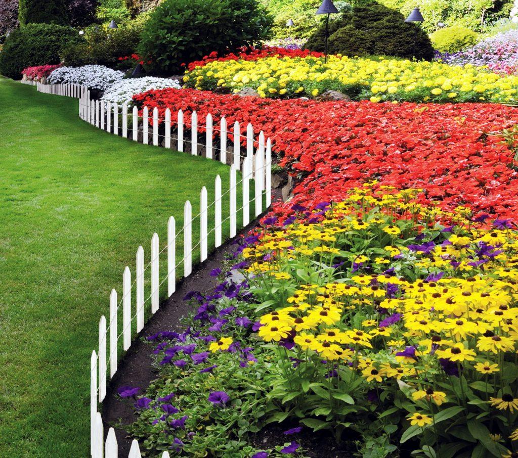 картинки цветников в саду своими руками используем только качественную