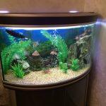Фото 10: Угловой аквариум