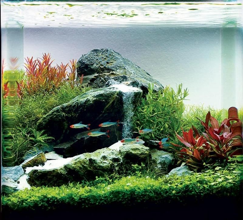 Водопад в аквариуме
