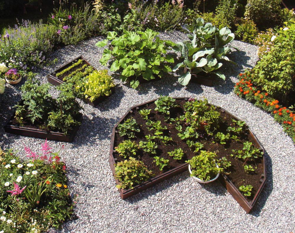 Сад огород дом дизайн фото прием