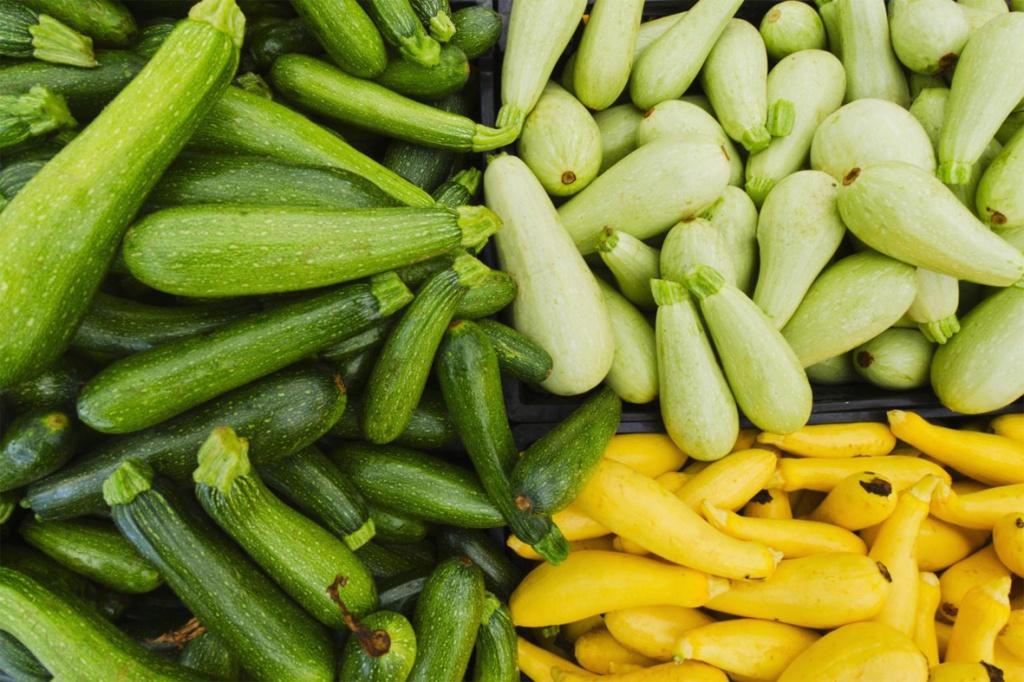 Разновидности кабачков