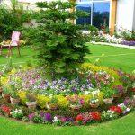 Фото 31: Прекрасная клумба с цветами