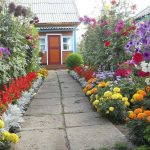Фото 36: Дачный сад