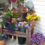 Фото 43: Как правильно оформлять цветник