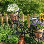 Фото 44: Использование велосипеда для цветника