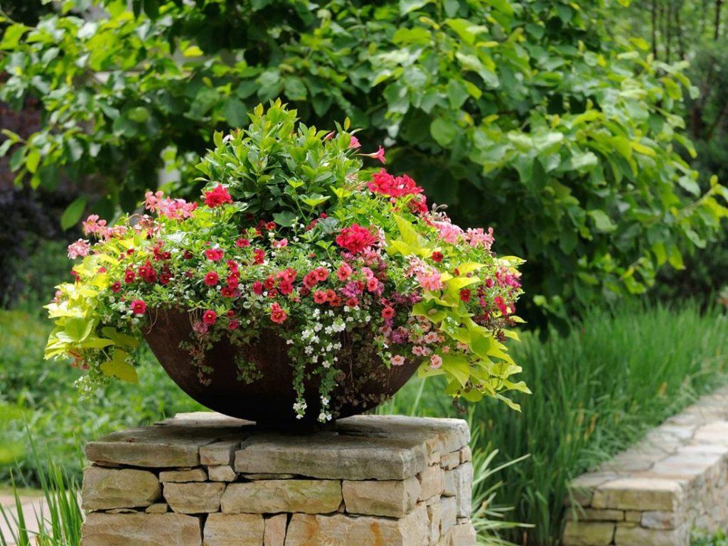 Вазоны под цветы - оформление дачного участка