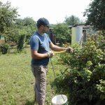 Фото 4: Самостоятельная обработка сада