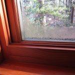 Фото 15: Потеют окна в квартире