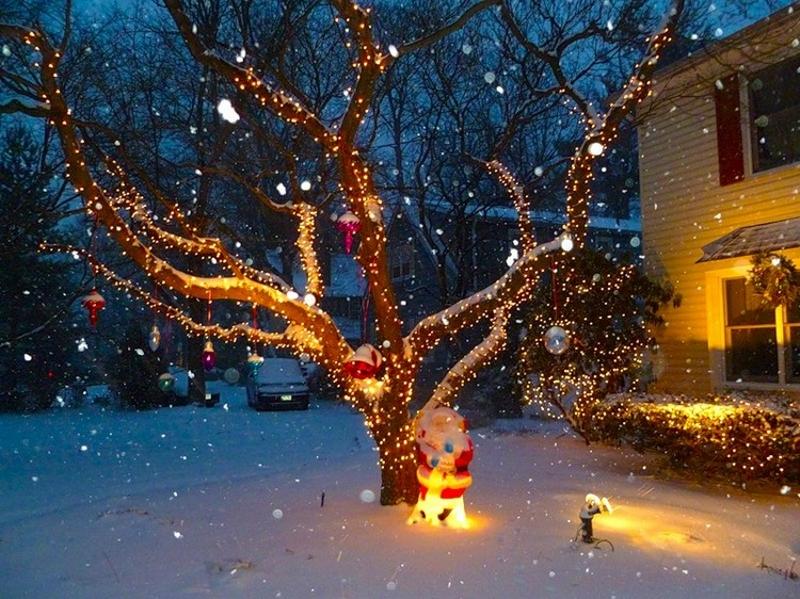 Подсветка деревьев к Новому Году