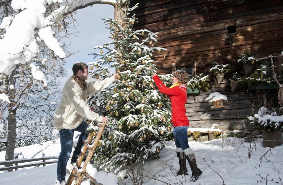Украшение живой елки во дворе