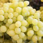 Фото 112: Лора виноград