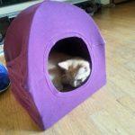 Фото 41: Домик для кошек