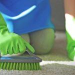 Фото 8: Как почистить ковёр